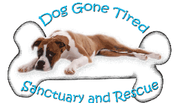 Dog Gone Tired Sanctuary and Rescue is located in Aqua Dulce, California.